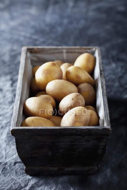 картофель черного цвета