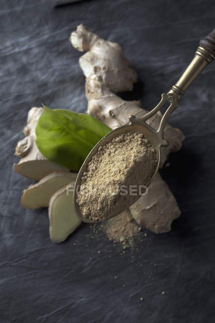 Латунная ложка с сушеным имбирным порошком и свежим имбирным корнем, закрыть — стоковое фото