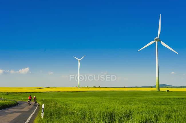 Германия, Саксония, Ветряные турбины на поле рапса, вид сзади велосипедистов — стоковое фото
