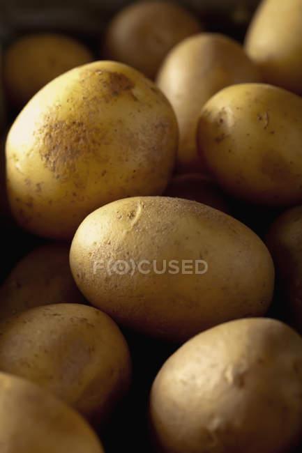 Nahaufnahme von frischen Kartoffeln im heap — Stockfoto