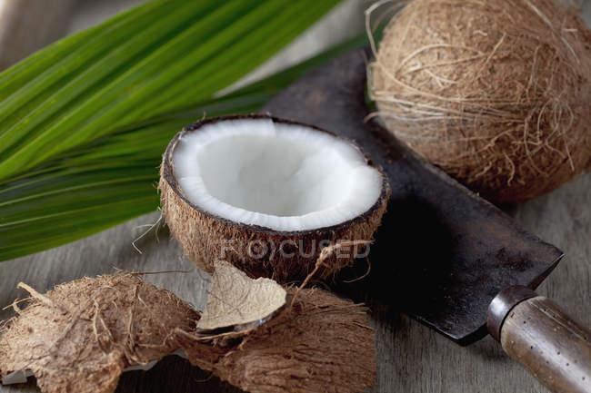 Cocos enteros y cortados a la mitad en madera oscura con cuchillo viejo y hoja - foto de stock