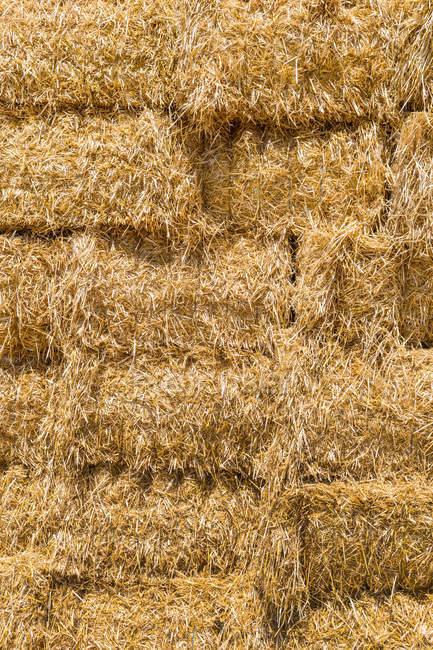 Austria, Hoersching, Straw bales after harvest — Stock Photo