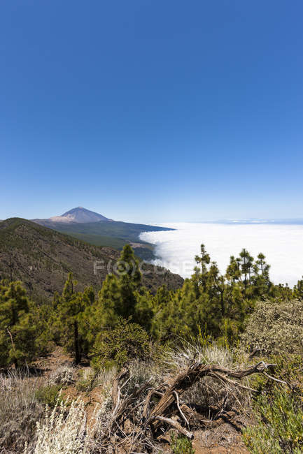 View of Teide National Park at daytime, Spain — Stock Photo