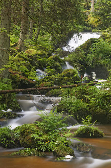 Austria, Lower Austria, View of waterfall during daytime — Stock Photo