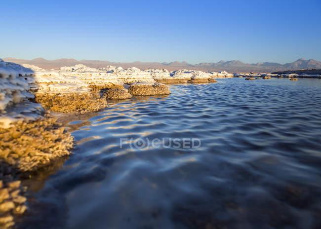 Cile, deserto di Atacama, Laguna Tebinquinche durante il giorno — Foto stock