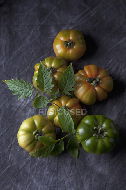 Sizilian tomatoes with leaves on black fabric — Stock Photo