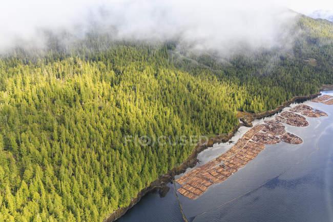 Canada, Colombie-Britannique, Prince Rupert, bois d'industrie, bois en bord de mer — Photo de stock