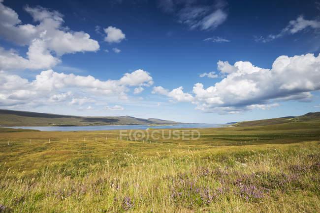 Великобритания, Шотландия, вид на город Хоуп возле Инверхоупа в дневное время — стоковое фото