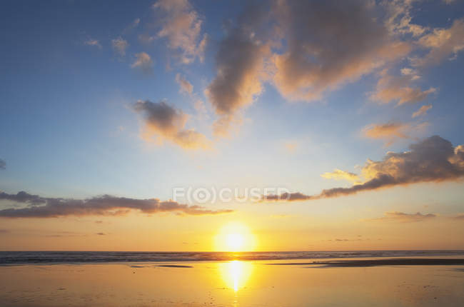 New Zealand, seascape of Piha Beach at sunset — Stock Photo