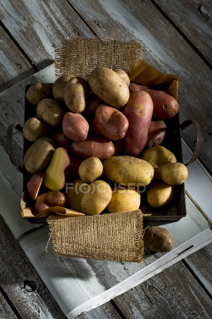 Top view of different sorts of organic potatoes on metal tray — Stock Photo
