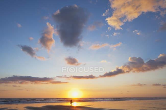 Nova Zelândia, homem carregando mochila andando ao longo da praia ao pôr do sol — Fotografia de Stock