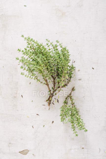 Fresh thyme on white chopping board, studio shot — Stock Photo