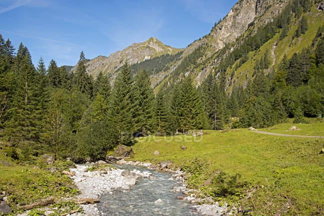Германия, Бавария, Долина Oy, Oybach, деревья поток реки и горы на фоне — стоковое фото