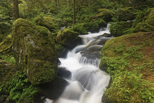 Австрия, Нижняя Австрия, Вид на водопад и траву днем — стоковое фото