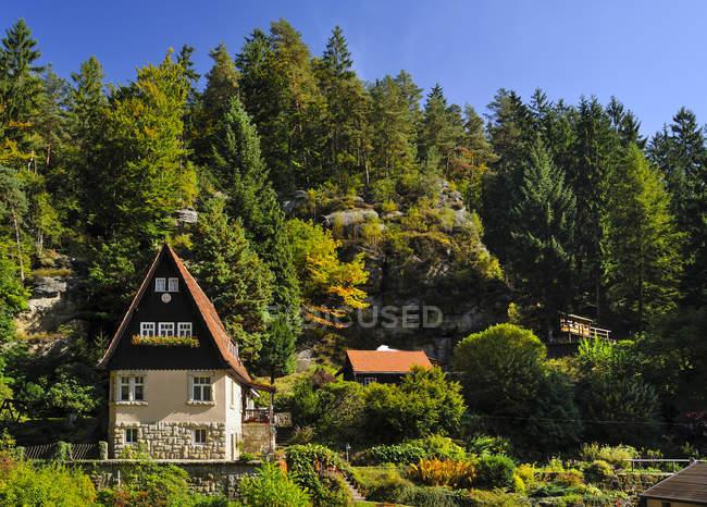 Alemania, Sajonia, Sajonia Suiza-Este Montañas Minerales, Raeumicht, vista de la casa contra los árboles en el bosque - foto de stock
