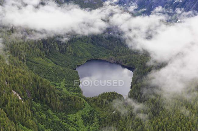 Canada, British Columbia, Khutzeymateen Provincial Park, Great Bear Rainforest, aerial view — Stock Photo