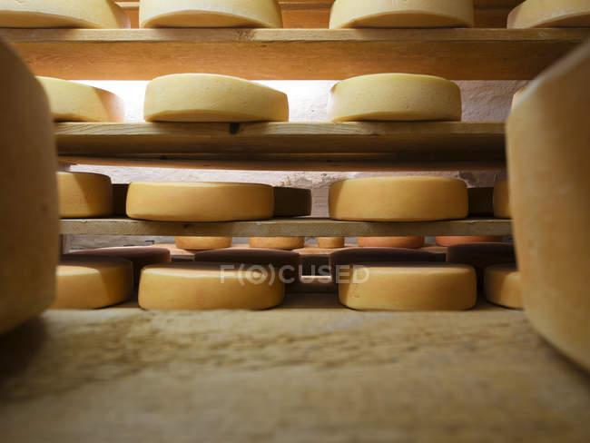 Pan de queso procesado en estanterías de la bodega - foto de stock