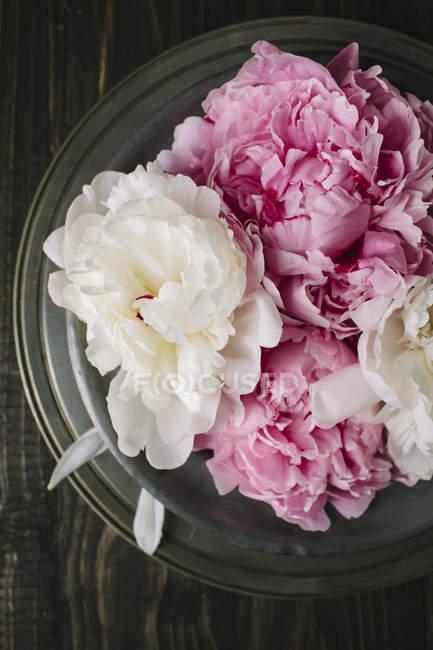 Букет квітів рожеві та білі півонії на дерев'яні поверхні — стокове фото