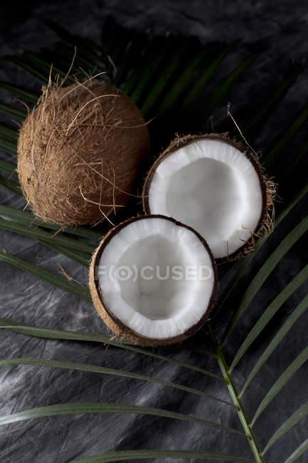 Cocos frescos enteros y cortados a la mitad sobre textil negro con hoja - foto de stock