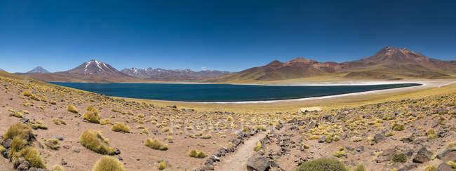 Südamerika, Chile, Atacama-Wüste, Laguna Miscanti im Hintergrund Anden — Stockfoto
