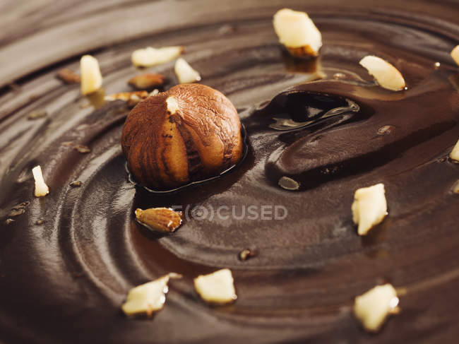 Закри шоколаду поверхню з вихору і фундука — стокове фото