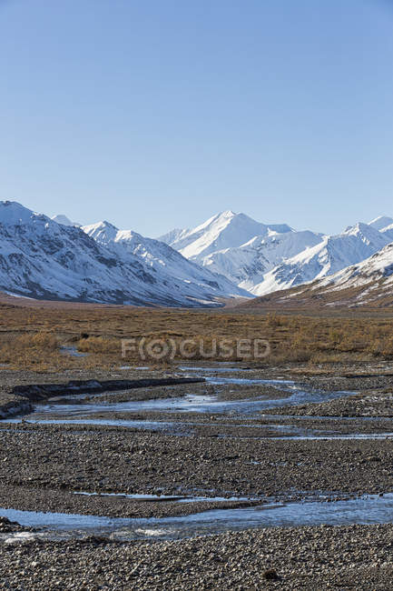 Rio de Toklat no Parque Nacional Denali, Alasca, Estados Unidos da América — Fotografia de Stock