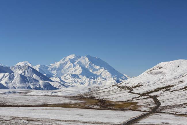 Gama de Alaska en el Parque Nacional de Denali, Alaska, Estados Unidos - foto de stock