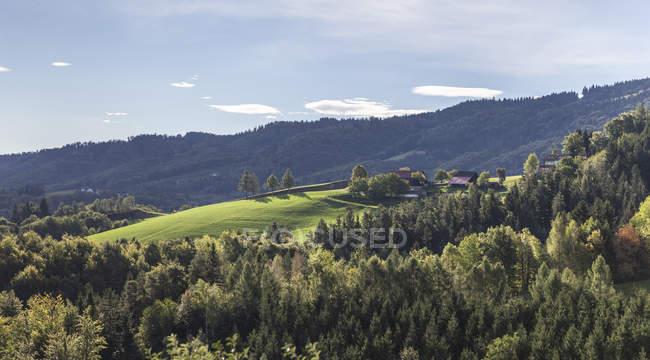 Австрия, Южная Штирия, Пейзаж ранним утром — стоковое фото