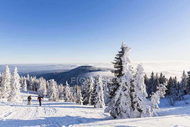 Germany, Bavaria, Mature man and woman hiking on Grosser Arber — Stock Photo