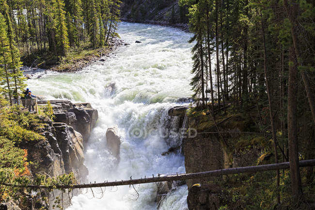 Canada, Alberta, Jasper National Park, Sunwapta Falls, Sunwapta fiume — Foto stock