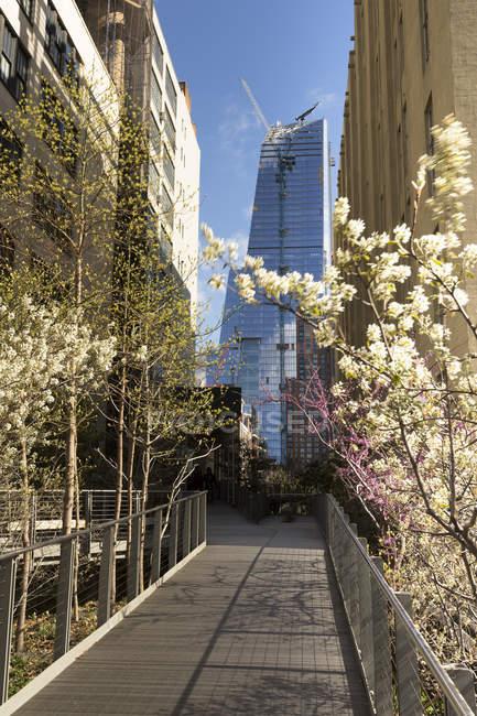 USA, New York, Manhattan, paysage urbain de haute ligne parc, passerelle et ses arbres en fleurs — Photo de stock