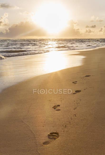 République dominicaine, empreintes de pas dans le sable à la plage tropicale au coucher du soleil — Photo de stock