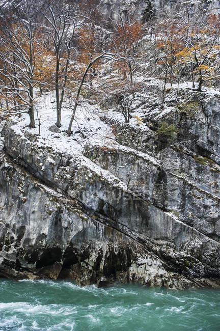 Австрія, Зальцбург держави, річки Зальцах та ліс восени на перевал Lueg — стокове фото