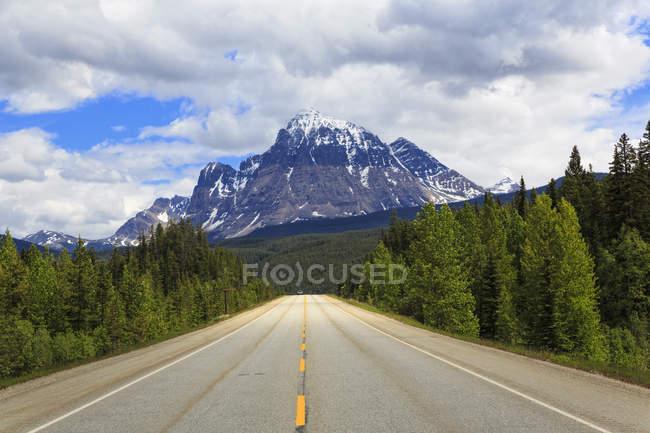 Канада, Британська Колумбія, Скелясті гори, дорога через гори Робсон Провінційний парк — стокове фото