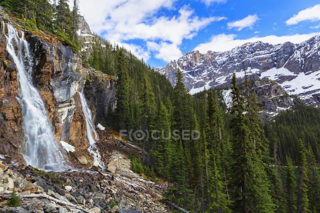 Canadá, Columbia Británica, Yoho Nationalpark, Seven Veils Falls con picos y árboles - foto de stock