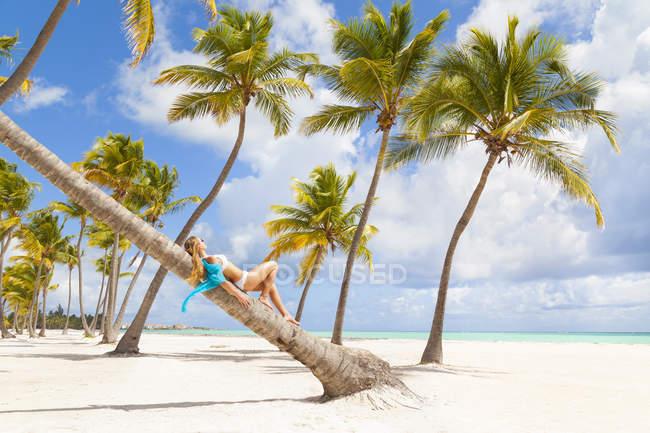 Доминиканская Республика, молодая женщина расслабляющий на пальму, глядя через тропический пляж — стоковое фото