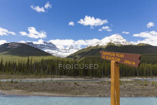 Канада, Альберти, Національний парк Джаспер, Banff Національний парк, Icefields Parkway, підписати Атабаска від річки — стокове фото