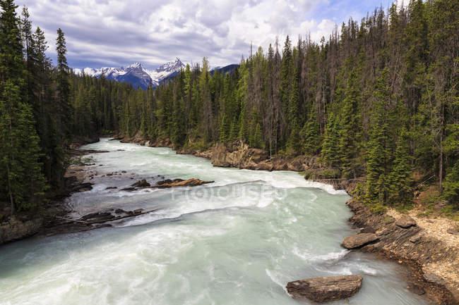 Canadá, Columbia Británica, Yoho Nationalpark, Puente Natural, Kicking Horse River - foto de stock