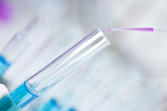 Germany, Pipetting pink liquid into test tubes, close up — Stock Photo