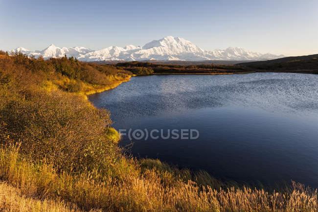 Monte Mckinley e admira lago no Parque Nacional Denali, Alasca, Estados Unidos da América — Fotografia de Stock
