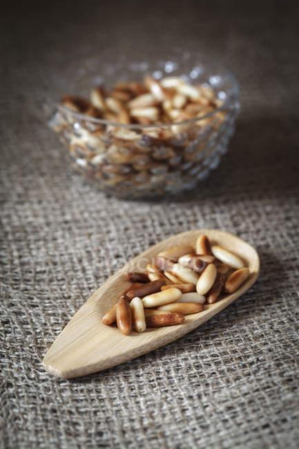Дерев'яні блюдо підсмаженими кедровими горішками на оперезана — стокове фото