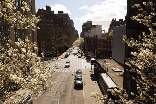 USA, New York, Manhattan, High Line Park, Cityscape com tráfego na rua e árvores florescentes — Fotografia de Stock