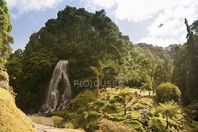 Portugal, Açores, São Miguel, Cachoeira no Parque Natural da Ribeira dos Caleiroes — Fotografia de Stock