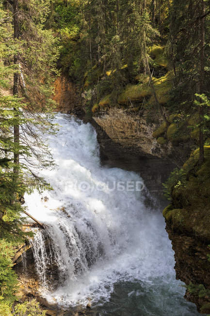 Canada, Alberta, le Parc National Banff, ruisseau Johnston, Johnston Canyon, chute d'eau — Photo de stock