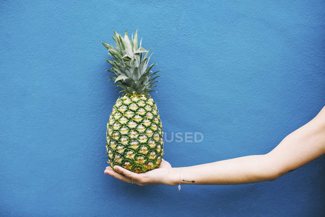 Женская рука Холдинг ананас — стоковое фото