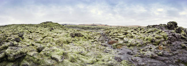 Iceland, mossy lava fields during daytime — Stock Photo