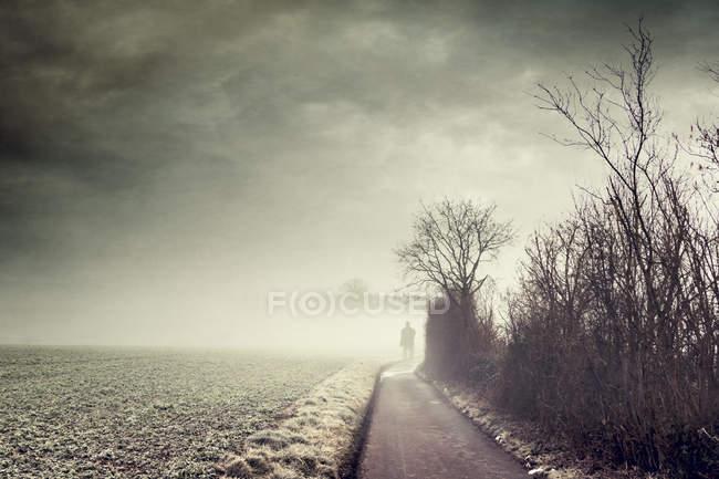 Silueta de un hombre parado en la nebulosa carretera del campo - foto de stock