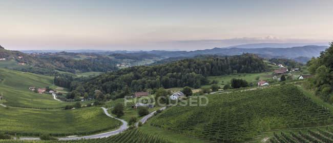 Blick vom österreichischen Grenze zum slowenischen Weinberge tagsüber — Stockfoto