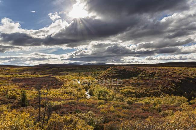 Paysage le long de la route de Denali à l'automne, Alaska, Usa — Photo de stock