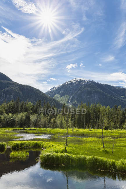 USA, Alaska, Hyder, Stewart River Landschaft am Fish Creek — Stockfoto